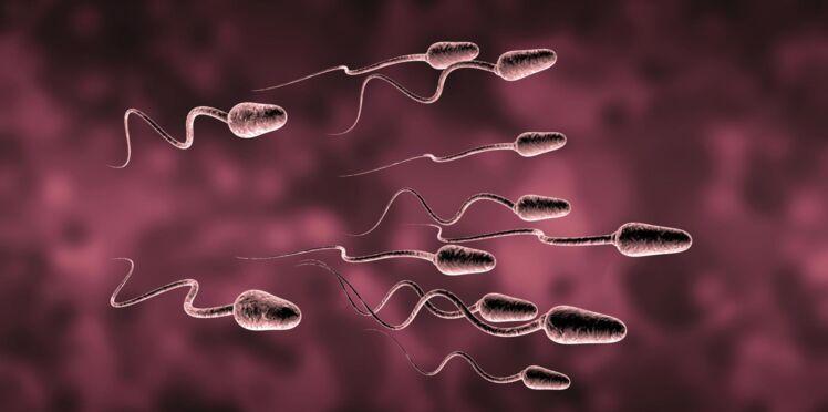 Don d'ovocytes et de spermatozoïdes : vous aussi vous pouvez sûrement donner !