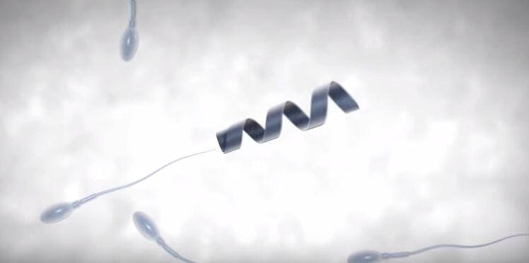Infertilité masculine : un robot pour booster les spermatozoïdes