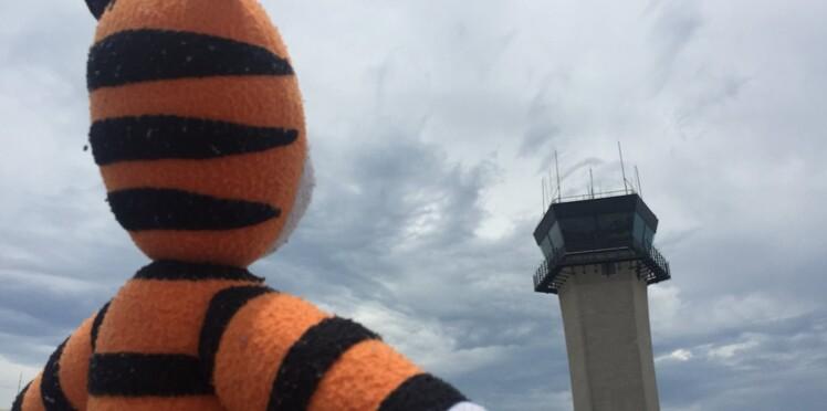 Les formidables aventures d'une peluche oubliée dans un aéroport
