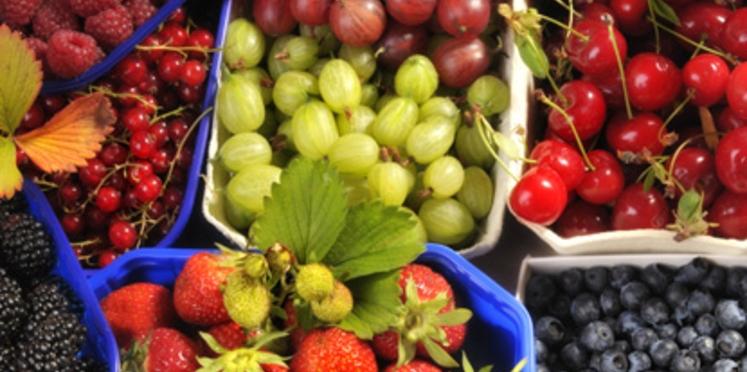 McDo distribue des fruits aux enfants
