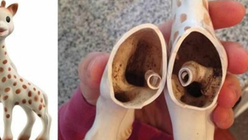 PHOTOS – Des parents découvrent de la moisissure à l'intérieur de Sophie La Girafe