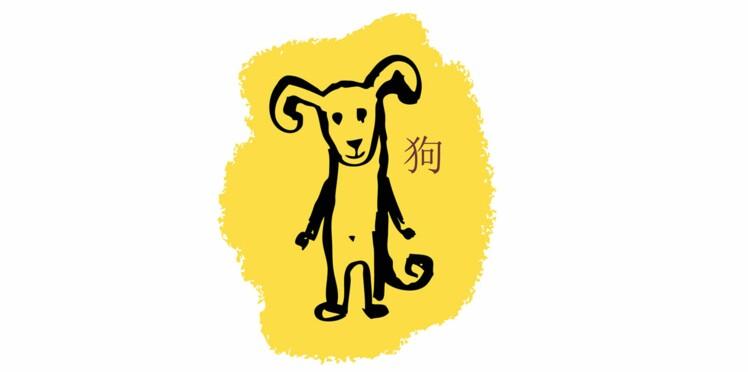 Chien : les prévisions de votre horoscope chinois 2016