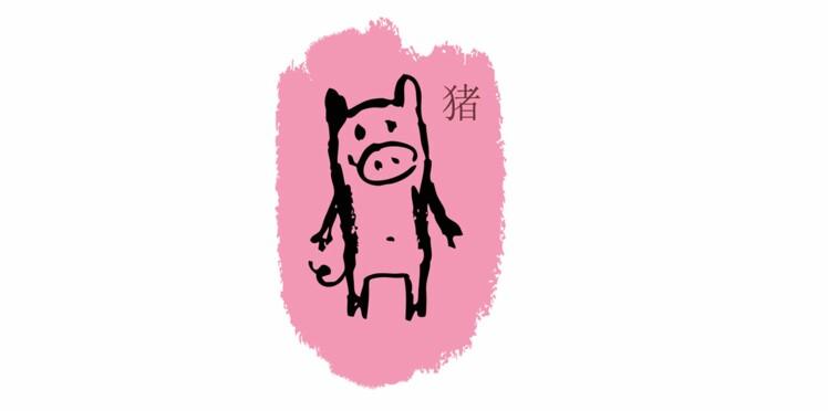 Cochon : les prévisions de votre horoscope chinois 2016