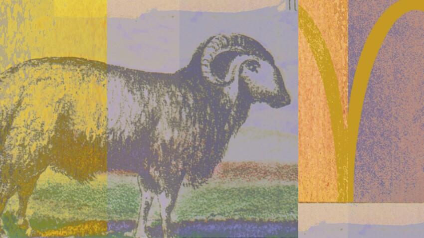 Horoscope 2016 du Bélier : nos prévisions