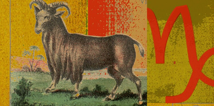 Horoscope 2016 du Capricorne : nos prévisions