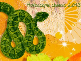 Horoscope chinois 2013 : une année pour faire peau neuve !