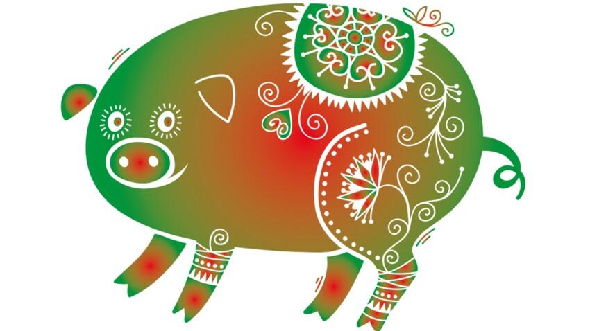 Horoscope chinois 2017 du Cochon : les prévisions de Marc Angel