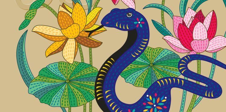 Horoscope chinois 2017 : les prévisions du Serpent