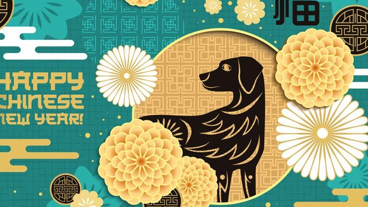 Horoscope chinois 2018 : l'année du Chien de Terre