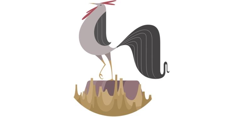 Horoscope chinois 2018 : prévisions pour le Coq