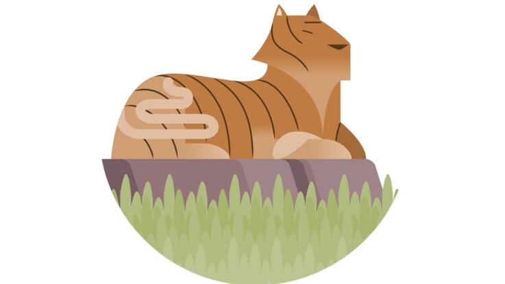 Horoscope chinois 2018 : prévisions pour le Tigre
