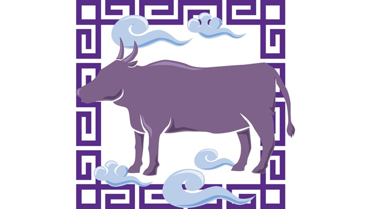 Horoscope chinois : le portrait du Buffle par Marc Angel (vidéo)