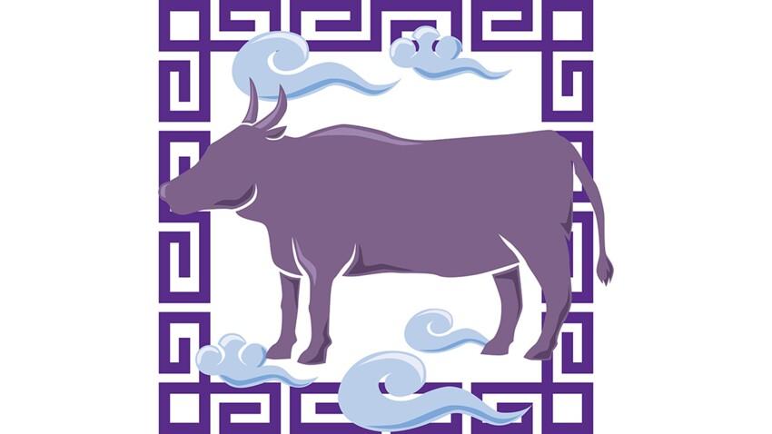 Horoscope chinois : le portrait du Buffle / Boeuf par Marc Angel (vidéo)
