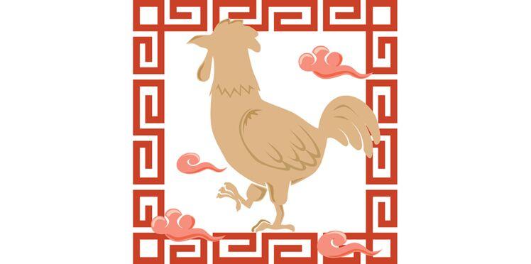 Horoscope chinois : le portrait du Coq par Marc Angel (vidéo)