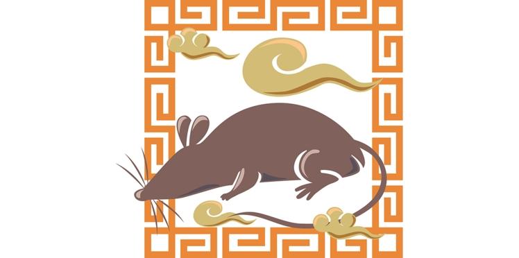 Horoscope chinois : le portrait du Rat par Marc Angel (vidéo)