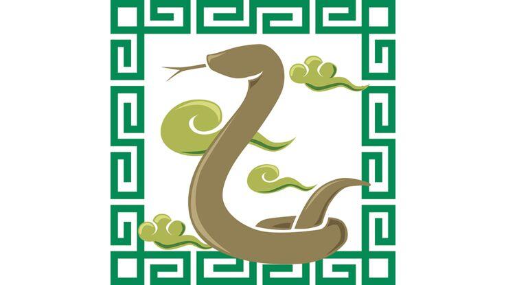 Horoscope chinois : le portrait du Serpent par Marc Angel (vidéo)