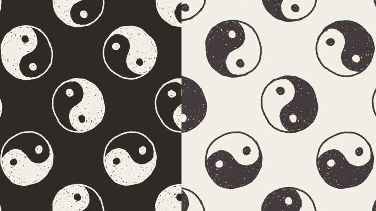 Horoscope chinois : les signes Yin et les Yang