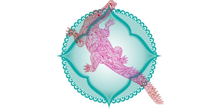 Horoscope de l'été 2017 du Makara (horoscope indien)