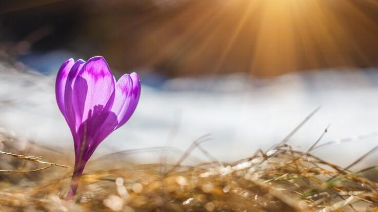Horoscope de mars 2018 : nos prévisions pour tous les signes astrologiques