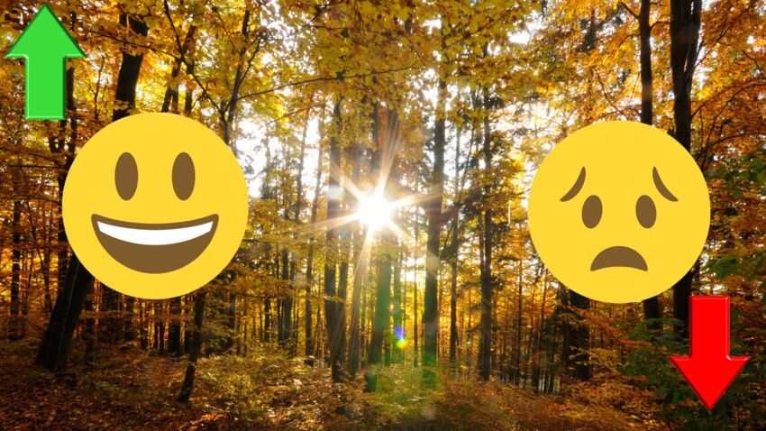 Horoscope d'octobre 2017 : les signes au top... et les flops