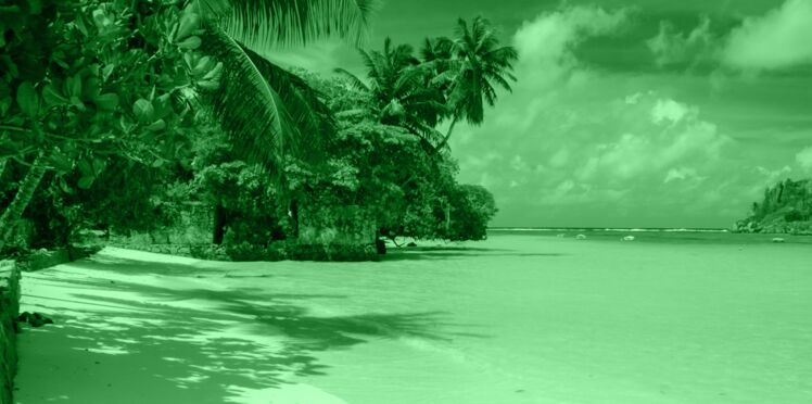 02/06-26/06 : L'île bleue, votre portrait en horoscope tahitien