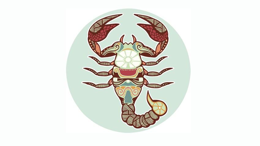 Scorpion : 10 conseils pour bien commencer 2017 par Marc Angel