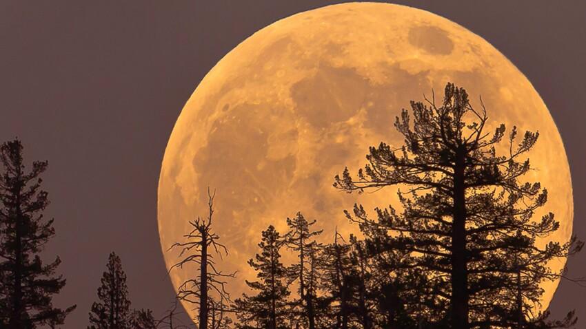 Super Lune bleue de sang mercredi : les explications de notre astrologue