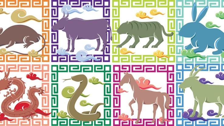 Horoscope chinois : découvrez votre signe et son histoire en vidéo