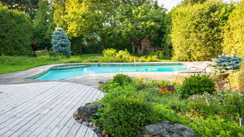 3 conseils pour un jardin au top cet été