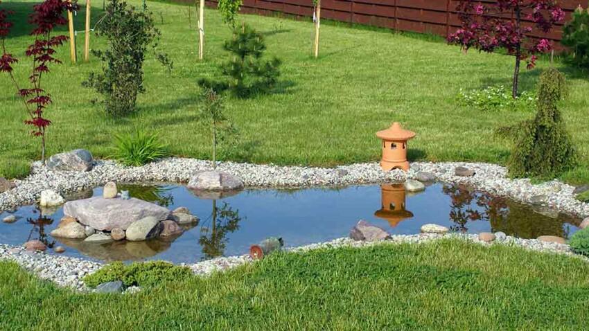 Bassin de jardin : on craque !