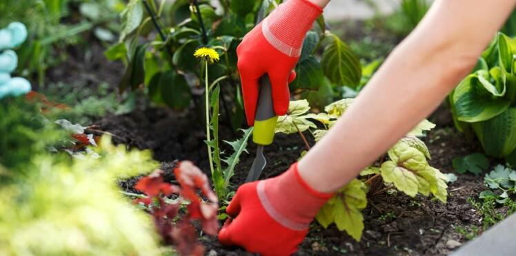 5 manières de se débarrasser naturellement des mauvaises herbes