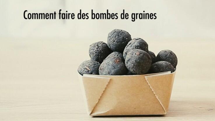 Comment faire des bombes à graines ?
