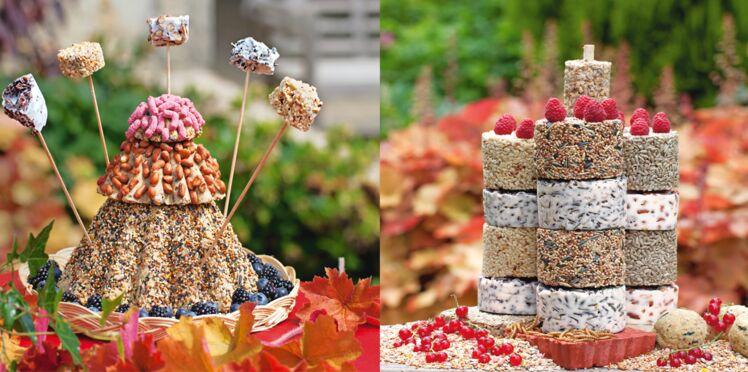 Des gâteaux pour nourrir les oiseaux cet hiver