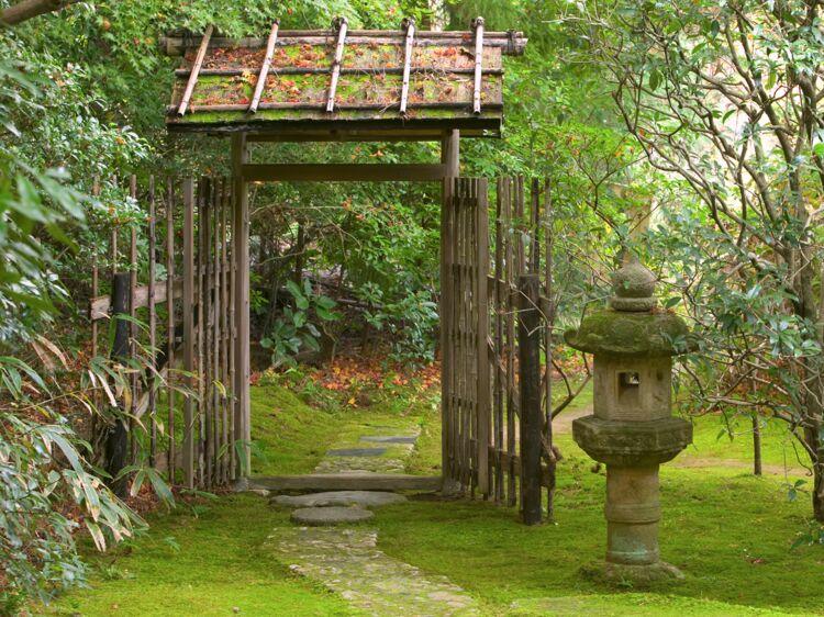 Jardin japonais : quelles plantes et comment l\'aménager ? : Femme ...