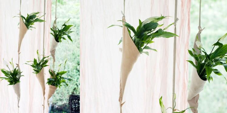 Jardin suspendu : un mur de spathiphyllums
