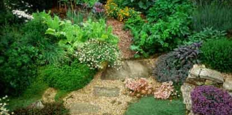 Jardiner écolo: mode d'emploi