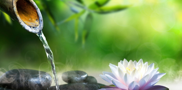 5 idées pour faire un jardin zen