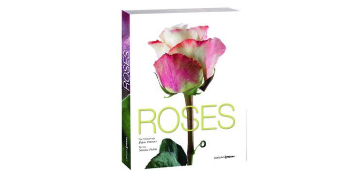 Un beau livre de roses pour Noël