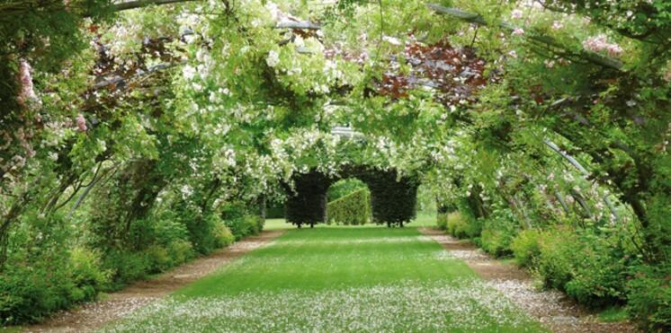 Promenade dans les jardins de 2012