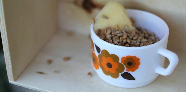 Mangeoire à oiseaux : DIY 100% récup