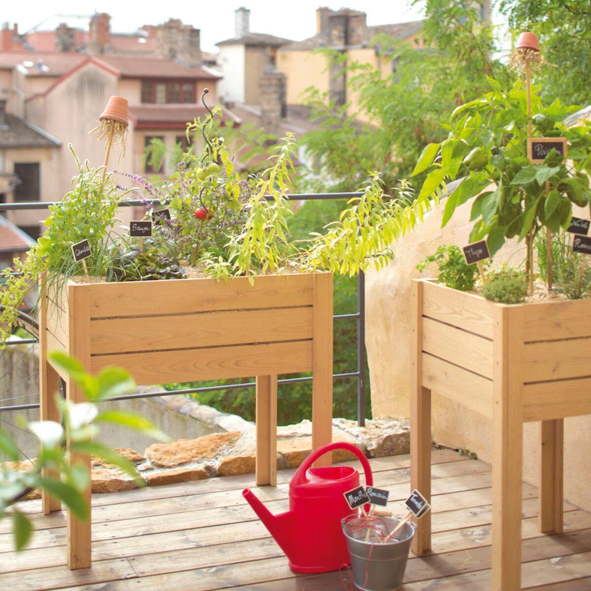 Potager 3 Etages Botanic un potager sur mon balcon - que faire pousser ? : femme