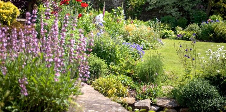 5 gestes à faire au jardin après un orage