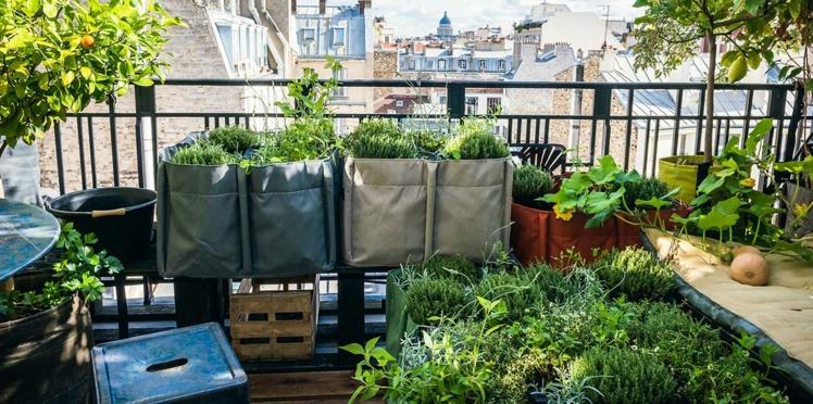 Balcon, terrasse, jardin, comment faire un potager