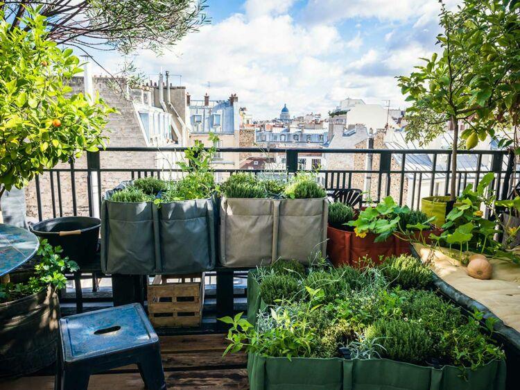 Potager Terrasse balcon, terrasse, jardin, comment faire un potager : femme actuelle