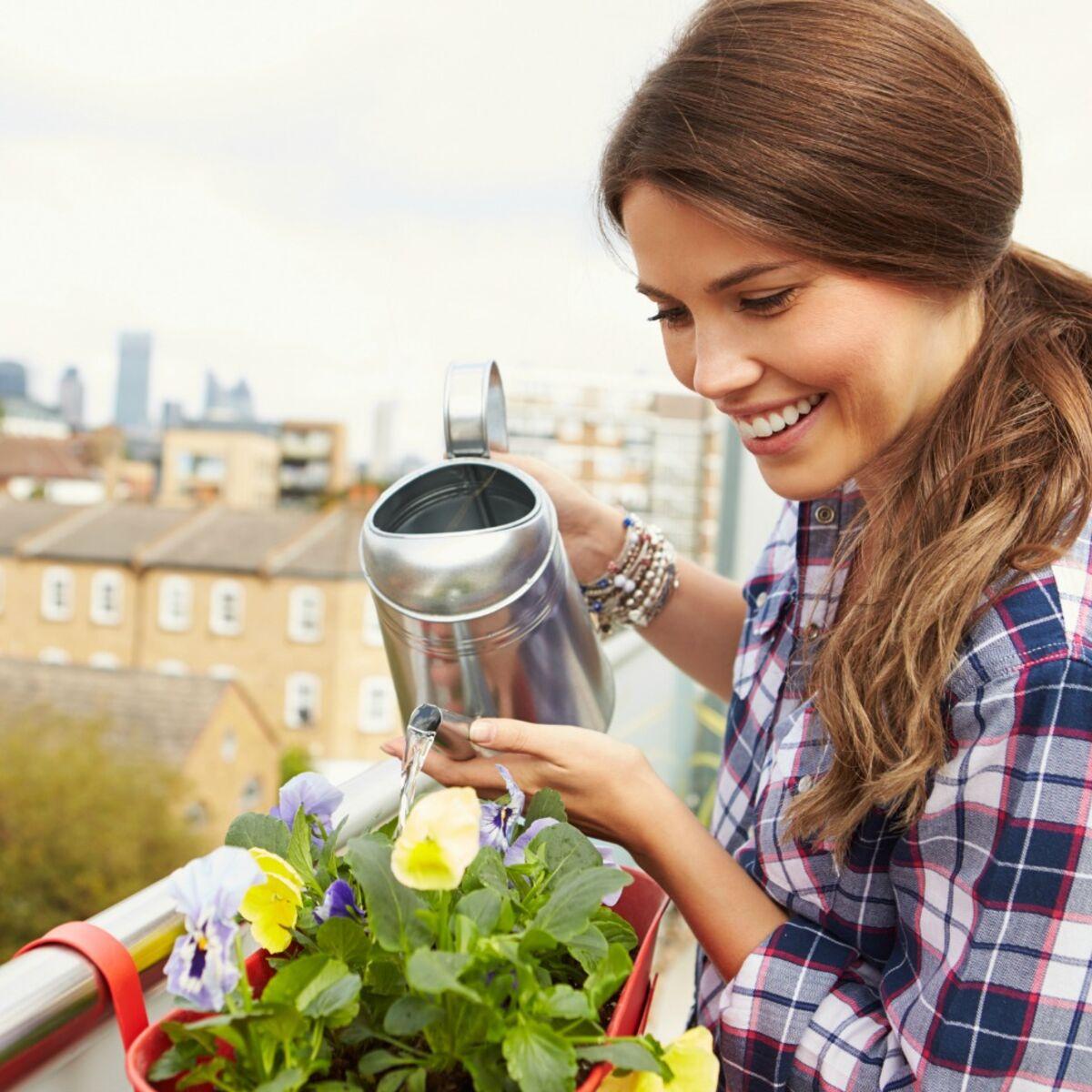 Comment Arroser Jardin Pendant Vacances vidÉo - comment arroser vos plantes pendant vos vacances