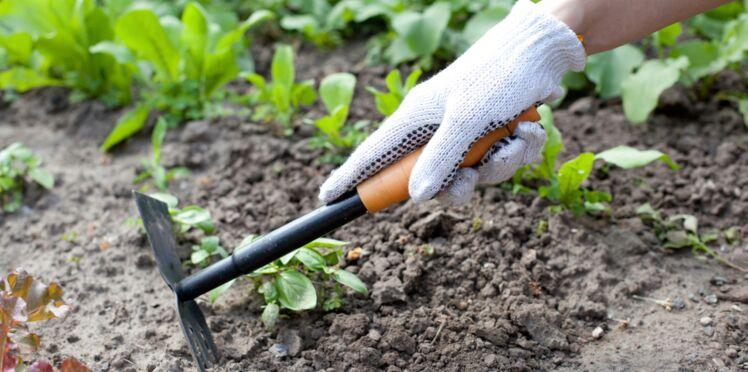 Comment biner son jardin ?