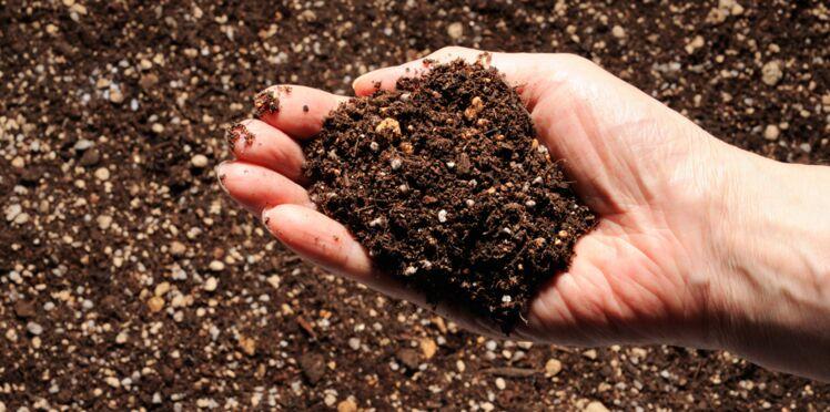 Comment fabriquer son engrais naturel ?