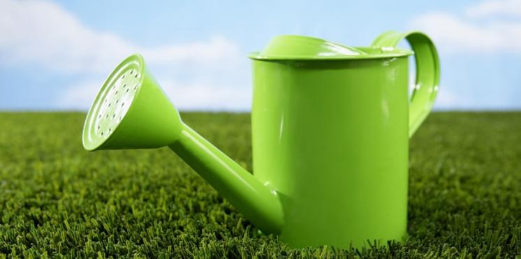 Jardiner sans polluer : astuces écolo