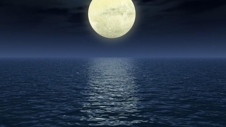 Jardiner avec la lune : qu'en dit Stéphane Marie ?