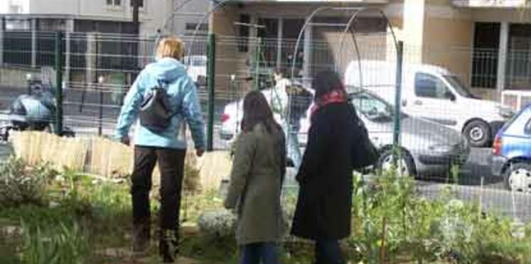Jardin partagé : toutes les adresses en France